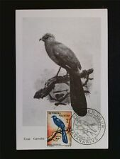 MALAGASY MK 1963 BIRDS VÖGEL VOGEL MAXIMUMKARTE CARTE MAXIMUM CARD MC CM c7008