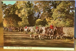 Irish Postcard AUTUMN HUNTING SCENE IN IRELAND Fox Hunt Horses Hounds Penman