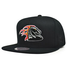 Detroit Pistons Mitchell & Ness ELEMENTS Snapback NBA Hat