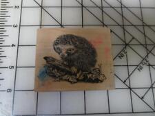 Psx F-1856 F1856 Usa Hedghog Hedgehog animal wildlife wood mounted rubber stamp
