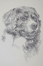 Bernese Mountain Dog Breed Portrait Art #68 Kline will add dogs name free. Gift