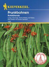 Prunkbohnen Feuerbohnen * Rotblühend * MHD 01/21 Kiepenkerl 152