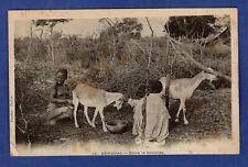 Bl/ CPA /Carte Postale/ Dans la Brousse / Seins nus  -> Sénégal   Afrique