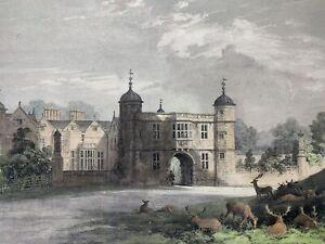 Antique Lithotint Print Of Charlecote Park Warwickshire, Framed, Estate Deer 🦌