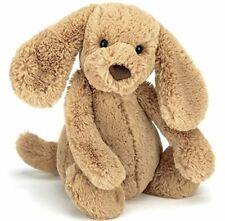 Bashful Puppy Toffee Medium, New Official Jellycat, Plush Toy 31cm