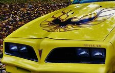 1 Vintage Pontiac Firebird Trans Am Car 12 Race Drag 24 Rare Carousel Yellow 18