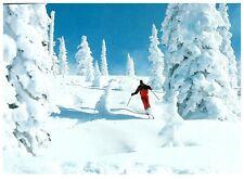 New listing Downhill Skiing Colorado Winter Magic Postcard PC980