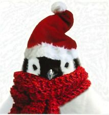 Charity Christmas Card Air Ambulance Service COOL PENGUIN 10 Pack