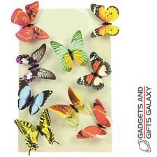 BUTTERFLY PAPER MAGNETS  ASSORTED DECORATION Gifts games & gadgets