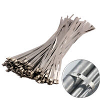 100 Pcs 4.6x300mm Stainless Steel Exhaust Wrap Coated Locking Cable Zip Ties