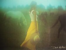 Carte Postale   DAVID  HAMILTON   Postcard  Femme Woman Chapeau  Chevaux