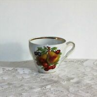 OLD NUREMBERG TEACUP FRUIT PATTERN BAVARIA GERMANY VINTAGE CUP NO SAUCER