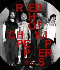 Red Hot Chili Peppers : The Stories Behind Every Song by Robert Fitzpatrick...