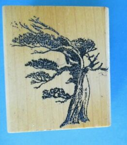 WINDBLOWN TREE Rubber Stamp