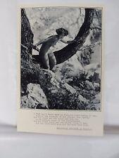 Boudoir Salon 1940s 50s  Decor Vintage print from photographers studio  Nude b