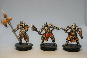 Hand Painted Reaper Bones Knights of the Realm Miniatures
