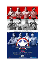 Official TNA Impact Wrestling 38 x 24 inch No Surrender 2011 PPV Poster