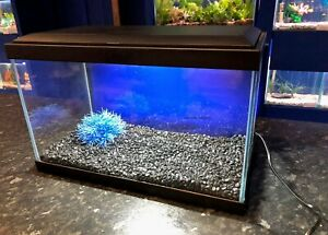 Ciano Aqua 20 Glass 17L Aquarium LED Lights & Filter Coldwater or Tropical