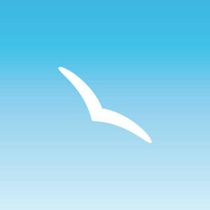 Sticker schwalbe 10cm White Silhouette Narrow Discrete Warning Bird Window Glass