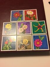 Poland Stamps 1981 MNH Succulent Flowers