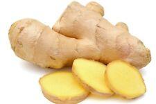 Fresh Ginger roots 900g - (Free UK Post )