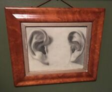 Antique Anatomy Ear Drawing Hand Drawn Anatomical Set Of Ears