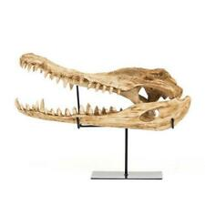 Zentique Shi022 Alligator Skull with Base 22.5 x 14.5 x 9 in.