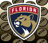 Florida Panthers Logo NHL Color Die Cut Vinyl Sticker Car Window Bumper Decal