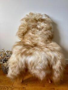 XL Large Genuine Merino Sheepskin Sheep Rug White/Ivory/Cream/Ginger Brown Tips
