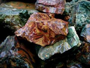 Dramatic KALEIDOSCOPE JASPER … 25 LB lot of impressive rough … Oregon … READ >>>