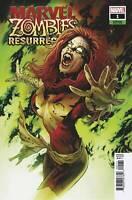 Marvel Zombies Resurrection #1 (Of 4) Land Variant (09/02/2020)