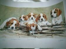 More details for beagle photo limited edition