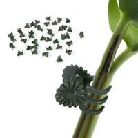 50*Black Plastic Plant Support Clips Orchid Stem Clip Vegetable For Vine B4U9