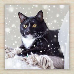 Cat Christmas Blank Cards & Packs - Black & White Cat Kitten Christmas Snow