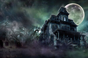 HAUNTED HOUSE Art Print Poster paranormal ghosts haunted mansion Scott Jackson