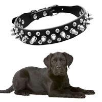 Dog Collar Spiked Large Stud Breed Black Leather 25cm Staffy Stud Spike &