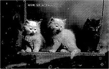 POSTCARD    CATS   Give  us  a  swing
