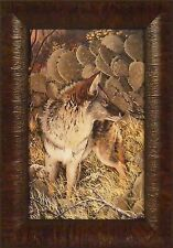 PRINCE OF THIEVES - COYOTE by Ray Whitson 11x15 FRAMED PRINT PICTURE Cactus