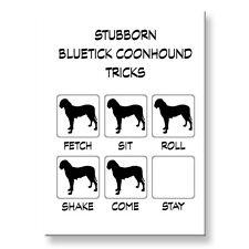 Bluetick Coonhound Stubborn Tricks Fridge Magnet Steel Case Funny