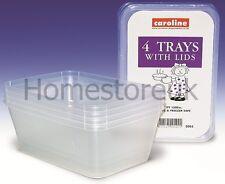 4 PLASTICA MASTELLI Dish VASSOI CONTENITORI CON COPERCHI Congelatore storer Storage 2005