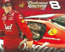 "2006 DALE EARNHARDT JR ""BUDWEISER RACING"" NASCAR SPRINT CUP SERIES POSTCARD"