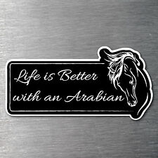 Life's better with an Arabian sticker Premium 7 yr water/fade proof vinyl pony