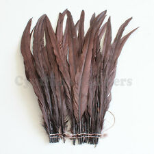 """25 pcs 14-16"""" long Brown Dyed Rooster COQUE tail Feathers for crafting, NEW"""