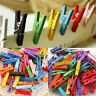 50x Mini Natural Wooden Clothes Photo Paper Peg Clothespin Craft Clips