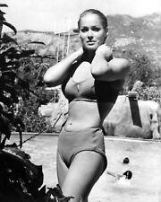 Ursula Andress 8x10 Photo Beautiful Vintage Model  61521