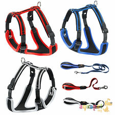 Ferplast Ergocomfort Dog Harness 5 Sizes Red Grey Blue optional Matching Lead