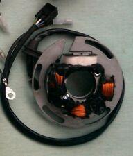 Scorpa Leonelli stator repairs.