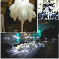 Natural Ostrich Feathers Wedding Party Decorative Furry Crafts Feather Decor DL5