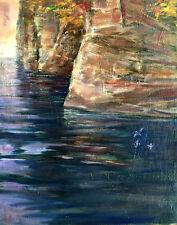 Big Sur California Ocean Cliff Seagulls 20x16 in.oil on canvas Hall Groat Sr.