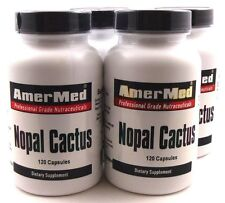 4X Nopal Cactus 600 mg 120 Capsules Weight Loss Blood Sugar Inflamation